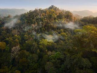 Aerial landscape of Thung Yai-Huai Kha Khaeng Wildlife Sanctuary in Thailand