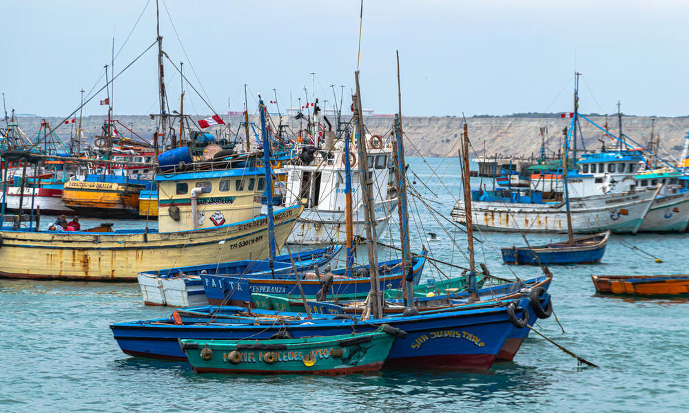 A cluster of small Peruvian fishing boats colored blue, green, yellow, and white that are moored in a secluded harbor on a hazy day.