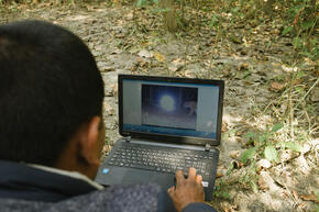 Researcher looks at tiger image from camera trap