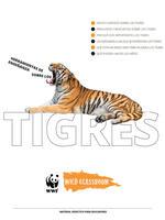 Herramientas Completas sobre los Tigres Brochure