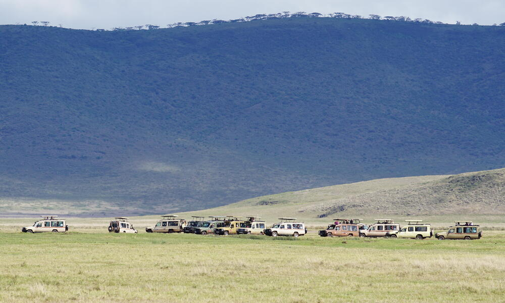 Tourist vehicles in a line with mountains in the background