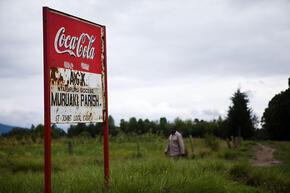 Coca-Cola sign, Upper Catchment, Lake Naivasha, Kenya
