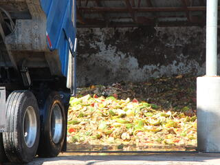 truck and fruit