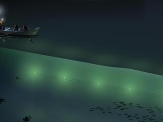 Turtle buoy net