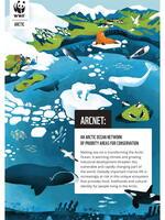 Digital Brochure: ArcNet Brochure