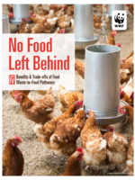 Benefits & Trade-offs of Food Waste-to-Feed Pathways Brochure