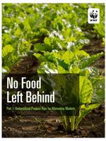 No Food Left Behind, Part 1: Underutilized Produce Ripe for Alternative Markets Brochure