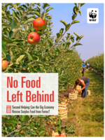 No Food Left Behind, Part 3: Second Helping: Can the Gig Economy Rescue Surplus Food from Farms Brochure