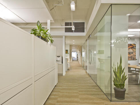WWF green office space