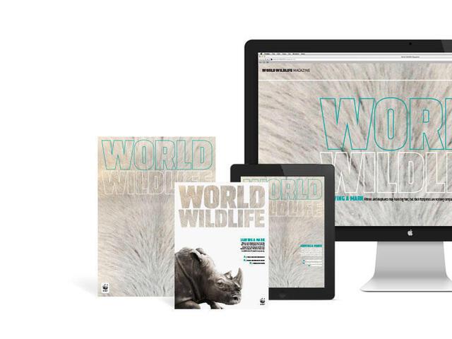 WWF Magazine - Print and digital