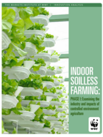Indoor Soilless Farming:  Phase I: Examining the  industry and impacts of  controlled environment  agriculture Brochure