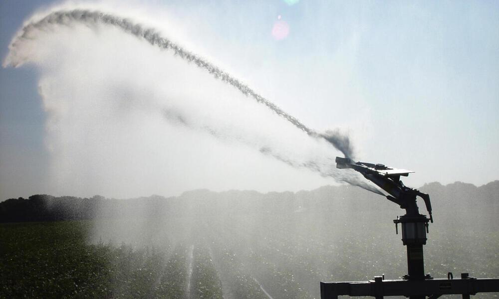 Sprinkler irrigation watering crops on farm