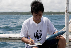Whale Shark Research
