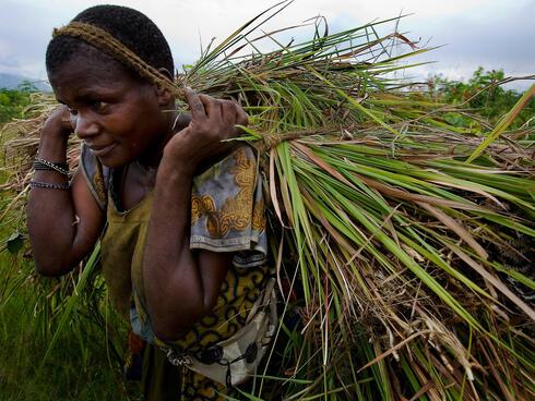 Woman carrying grass DRC