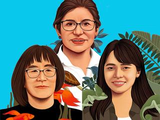 Women's feature illustration