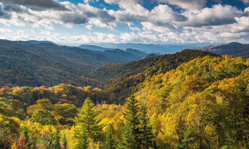 Piedmont landscape