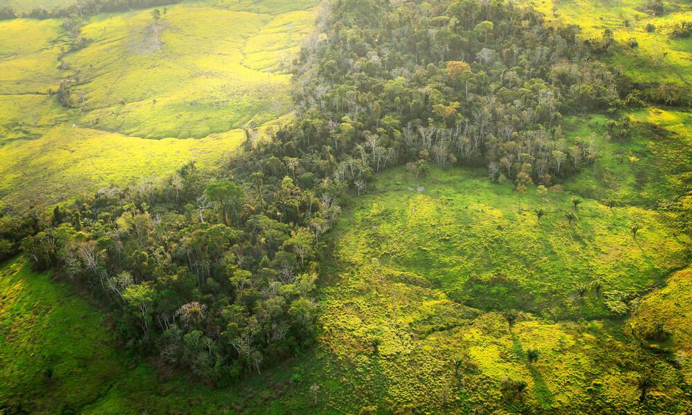 Aerial shot showing deforestation in Amazon rainforest in Acre, Brazil.