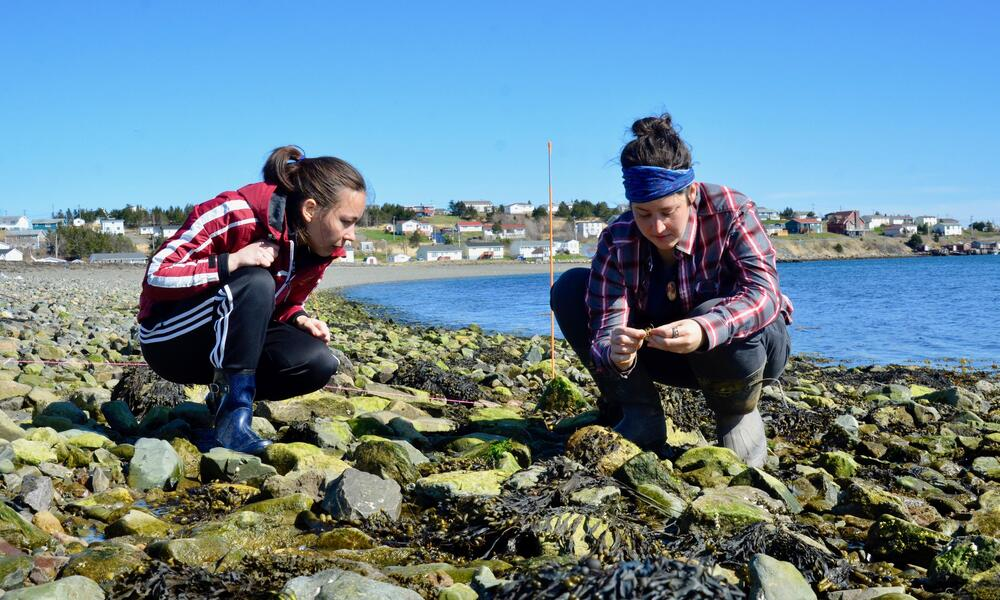 two women crouching down on a rocky shoreline examining rocks