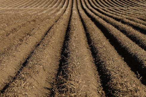 Farmland in the UK.