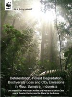 Deforestation, Forest Degradation, Biodiversity Loss and CO2 Emissions in Riau, Sumatra, Indonesia Brochure