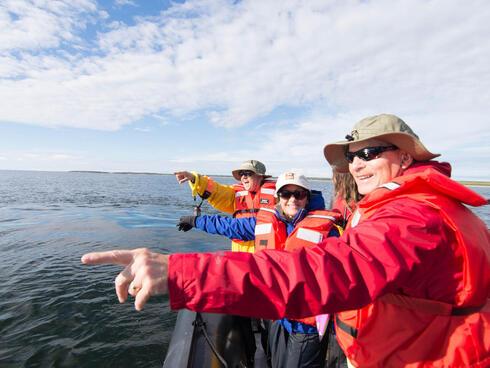 Beluga whale watchers