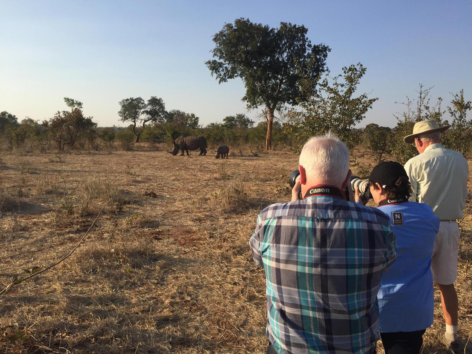 discover rhino photog summer2018