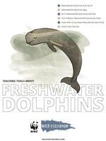 Full Freshwater Dolphin Toolkit Brochure