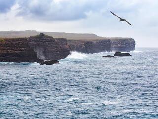 ecuador ocean WW288186 Antonio Busiello