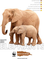 Full Elephant Toolkit Brochure