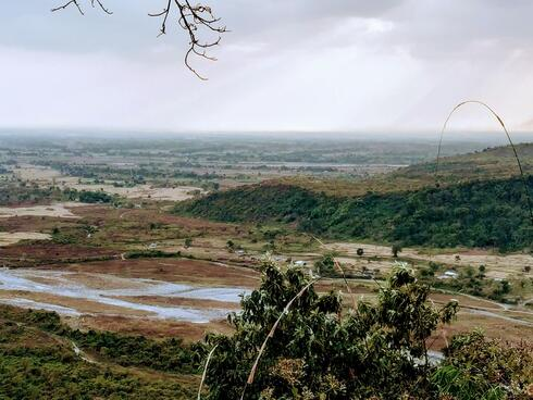Forest loss due to human encroachment