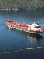 Lessons Not Learned: 20 Years After the Exxon Valdez Disaster Brochure