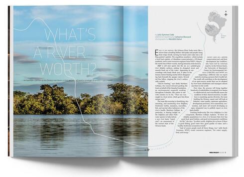 River article in WW Magazine