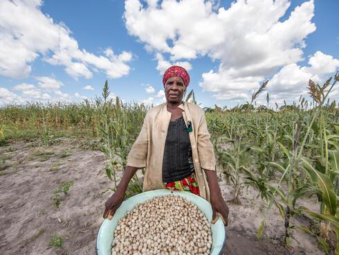 feature botswana crops winter2018