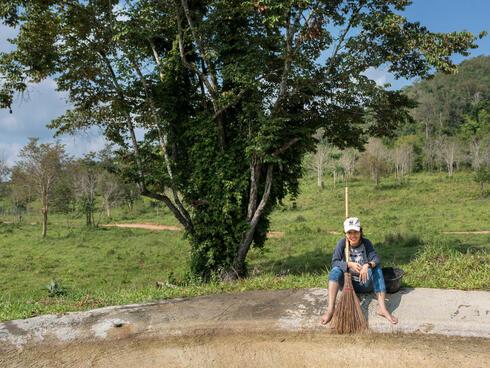 feature thailand broom winter2018