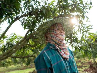 feature thailand scarf winter2018