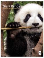 Giant Panda: WWF Wildlife and Climate Change Series Brochure