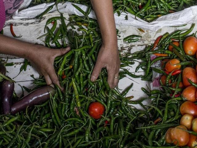 woman sorting produce