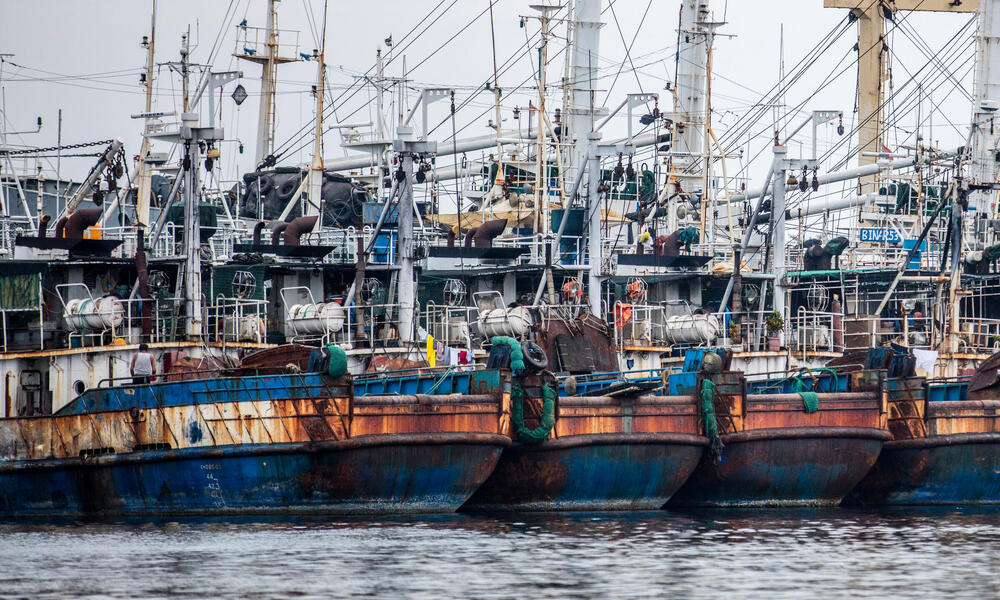 200 fishing boats were grounded because of IUU, company's license suspended. New minister of marine affairs and fisheries - Susi Pudjastuti - taking more hardine approach to fisheries law enforcement, Indonesia.