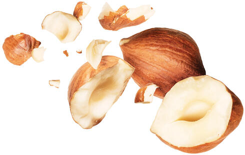 Several hazelnuts whole and broken