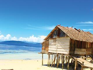 Bird's Hair Seascape, West Papua, Indonesia