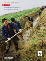 In Pursuit of Prosperity: China Chapter Summary Brochure