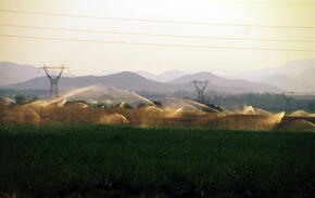 Intensive use of scarce groundwater resources to irrigate sugar cane Eastern Transvaal Republic Of South Africa