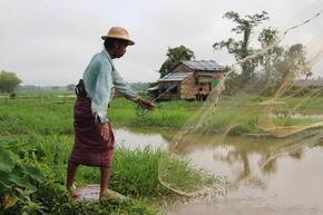 A man throws a fishing net in Myanmar