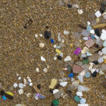 Small pieces of plastic washed up on a beach