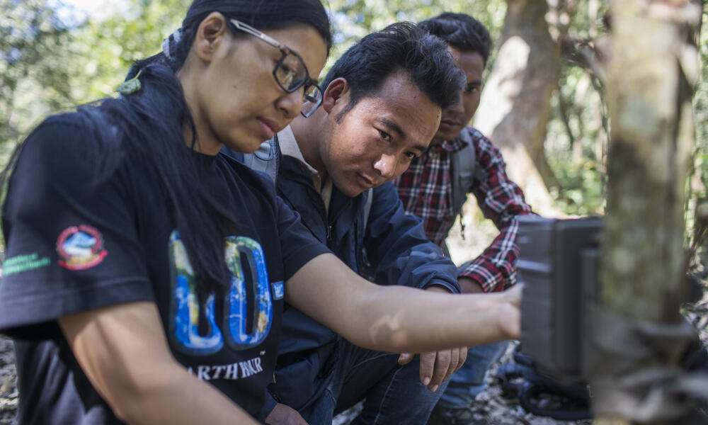 Sabita Malla (front), tiger expert at WWF Nepal, is installing a camera trap with citizen scientists responsible for monitoring tigers in the Khata Corridor. Most visible citizen scientist here is Chabbi Thara Magar.
