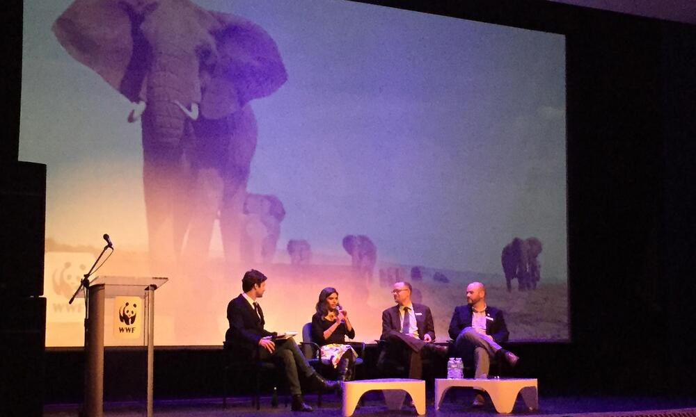 Others traveled to the Embassy of France for a screening of Disruption, a climate change documentary, followed by a panel discussion about climate change policy.