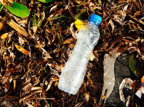 plastic on a beach Greg Armfield WW275057
