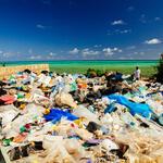 plastic washed up on beach WW274944 Greg Armfield