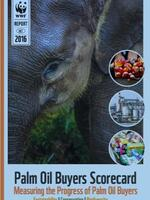 Palm Oil Scorecard 2016 Brochure