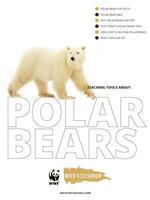 Full Polar Bear Toolkit Brochure